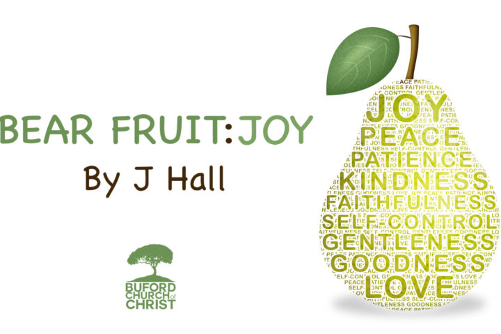 bear fruit_joy