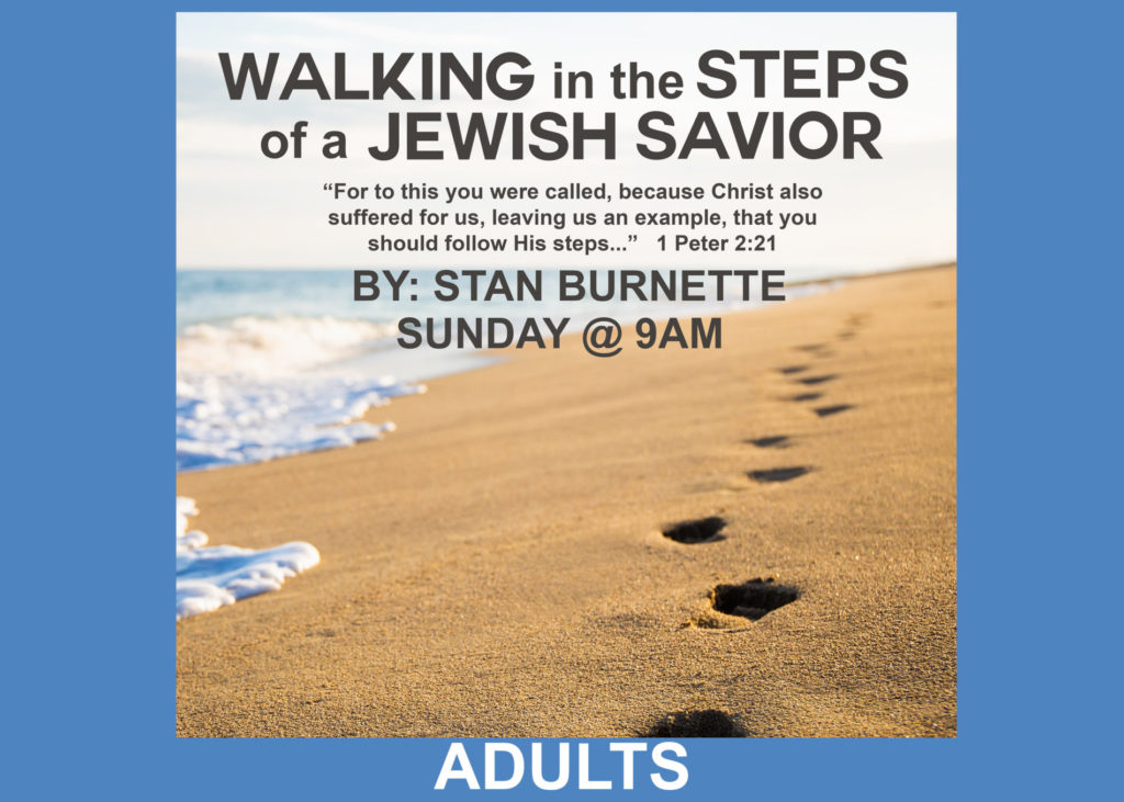 WalkingInTheStepsofSavior_logob